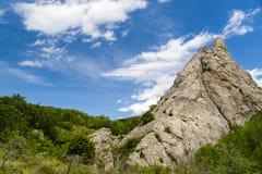 Скалистый горный пик в лесе Стоковые Изображения RF