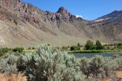 Скалистый каньон около Challis, Айдахо стоковые фото