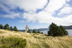 Скалистый маяк гавани Стоковые Фотографии RF
