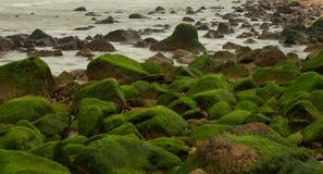 Скалистый прибрежный барьер выхода на поверхность Стоковое фото RF