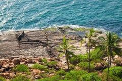 Скалистый пляж с пальмами Стоковое фото RF