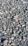 Скалистый пляж seattle Стоковые Изображения RF