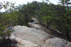 Скалистый след на ущелье Red River Стоковое Изображение