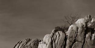 Скалы и береговая линия Стоковое Изображение RF
