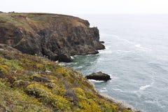 Скалы моря Стоковые Фото