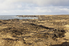 Скалы на береговой линии полуострова Snaefellsnes. Стоковые Изображения