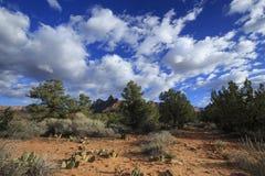 Скалы орла Сиона Стоковая Фотография RF