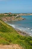 Скалы пляжа Южной Америки 5 Стоковые Изображения RF