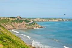 Скалы пляжа Южной Америки 4 Стоковая Фотография RF