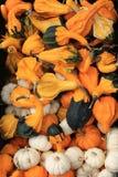 Сквош и тыквы для продажи на рынке фермеров стоковые фотографии rf