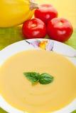 сквош супа Стоковое фото RF