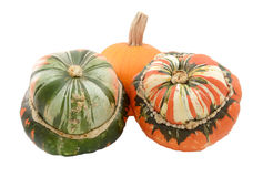 Сквош тюрбана 2 турков с малой оранжевой тыквой Стоковые Фотографии RF