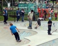 Скейтбордисты в парке стоковые изображения rf
