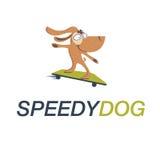 скейтборд собаки Стоковые Фото