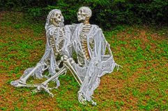 скелеты Стоковое Изображение RF