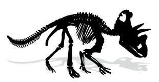 Скелет динозавра Стоковое фото RF