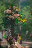 скелет матушка-природы Стоковые Фотографии RF