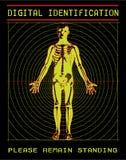 скеннирование тела цифровая Стоковые Фотографии RF