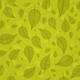 Скелетированные листья на зеленом векторе предпосылки Стоковая Фотография