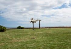 Скелет кашалота в Morro Jable на острове Фуэртевентуре Стоковые Изображения RF