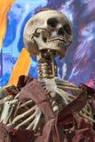 Скелет на поезде призрака парка атракционов Стоковая Фотография