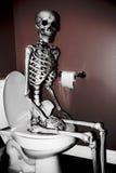 Скелет на туалете стоковая фотография rf
