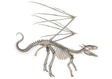 Скелет дракона Стоковое Изображение