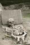 Скелет римского стоковая фотография