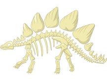 Скелет стегозавра шаржа Стоковые Изображения RF