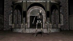 скелет иллюстрация вектора