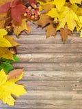 Скидка ноябрь рамки деревянной доски разрешения ягоды Стоковые Фото