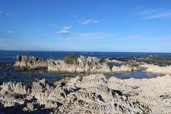 Складчатые породы на seashore, Kaikoura, Новой Зеландии стоковое фото rf