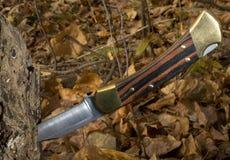 складывая нож Стоковое Изображение