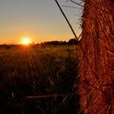 Склоняя поле Стоковая Фотография