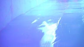 Скольжение льда, холм льда сток-видео