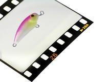 скольжение Стоковая Фотография RF