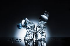 Скомканные пластичные бутылки воды Стоковое Изображение RF