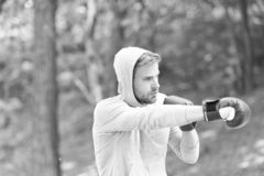 Сконцентрированные спортсменом тренируя перчатки бокса Атакуйте или защитите всегда готовый Сконцентрированные спортсменом перчат стоковое изображение