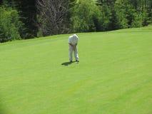 сконцентрированный игрок в гольф Стоковое Изображение