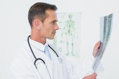 Сконцентрированный мужской доктор смотря рентгеновский снимок позвоночника Стоковое Изображение
