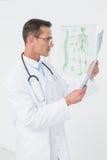 Сконцентрированный мужской доктор смотря рентгеновский снимок позвоночника Стоковые Фото
