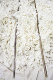 Скорняки шерстей Стоковые Фото