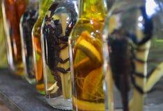 Скорпион поглощенный в бутылке Стоковое Фото