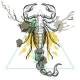 Скорпион Zentangle стилизованный в рамке треугольника с акварелью внутри иллюстрация штока