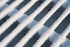 скотины покрыли снежок свежей решетки новый Стоковое Изображение RF