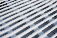 скотины покрыли virgin снежка решетки Стоковая Фотография RF