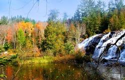 скрепление падает вода Стоковые Изображения