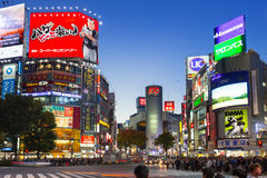 Скрещивание борьбы Shibuya в токио на ноче, Японии Стоковое Фото