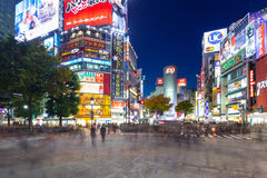 Скрещивание борьбы Shibuya в токио на ноче, Японии Стоковые Изображения RF