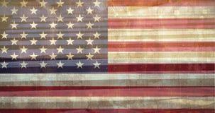 скрещивание зебры с американским флагом видеоматериал